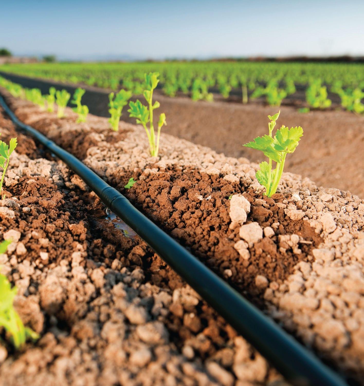 Žemės ūkio laistymas